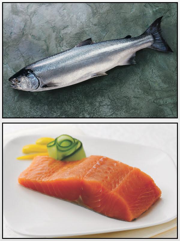Salmão Prateado Alaska Seafood