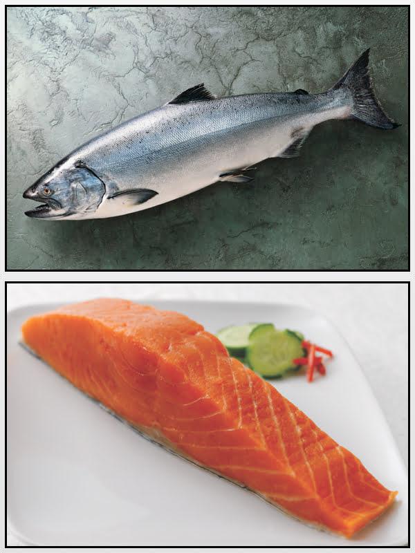 Salmão Real Alaska seafood