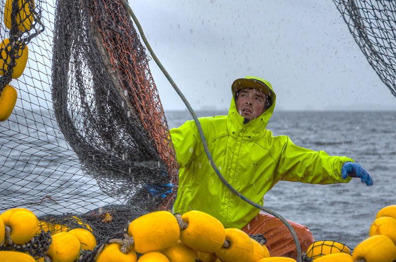 Pescador de Alaska em ação
